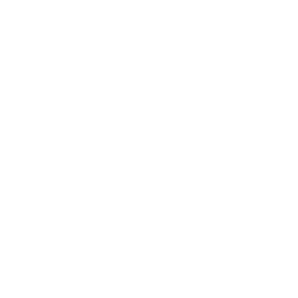 NSW Design and Build Logo